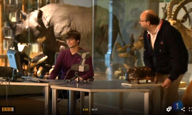 La colección del Museo en 3D