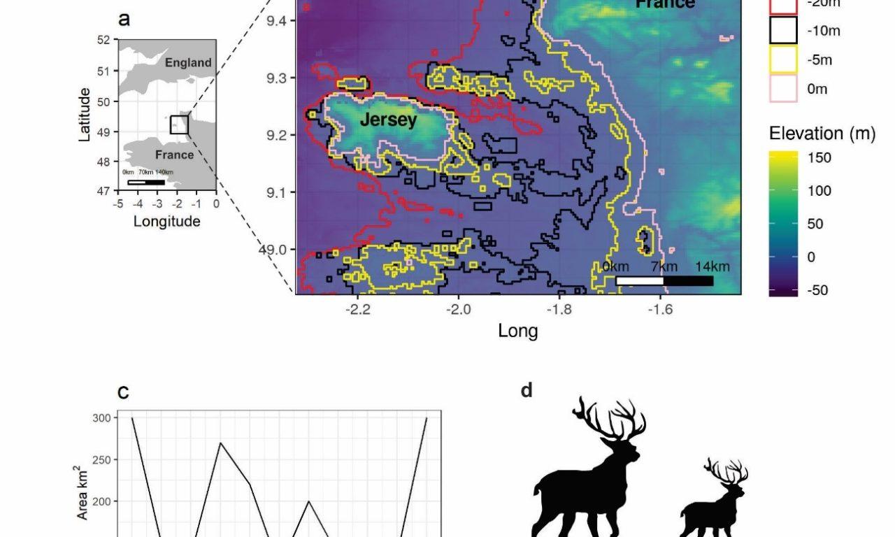 Diniz-Filho et al. (2021) Quantitative genetics of an extreme insular dwarfing