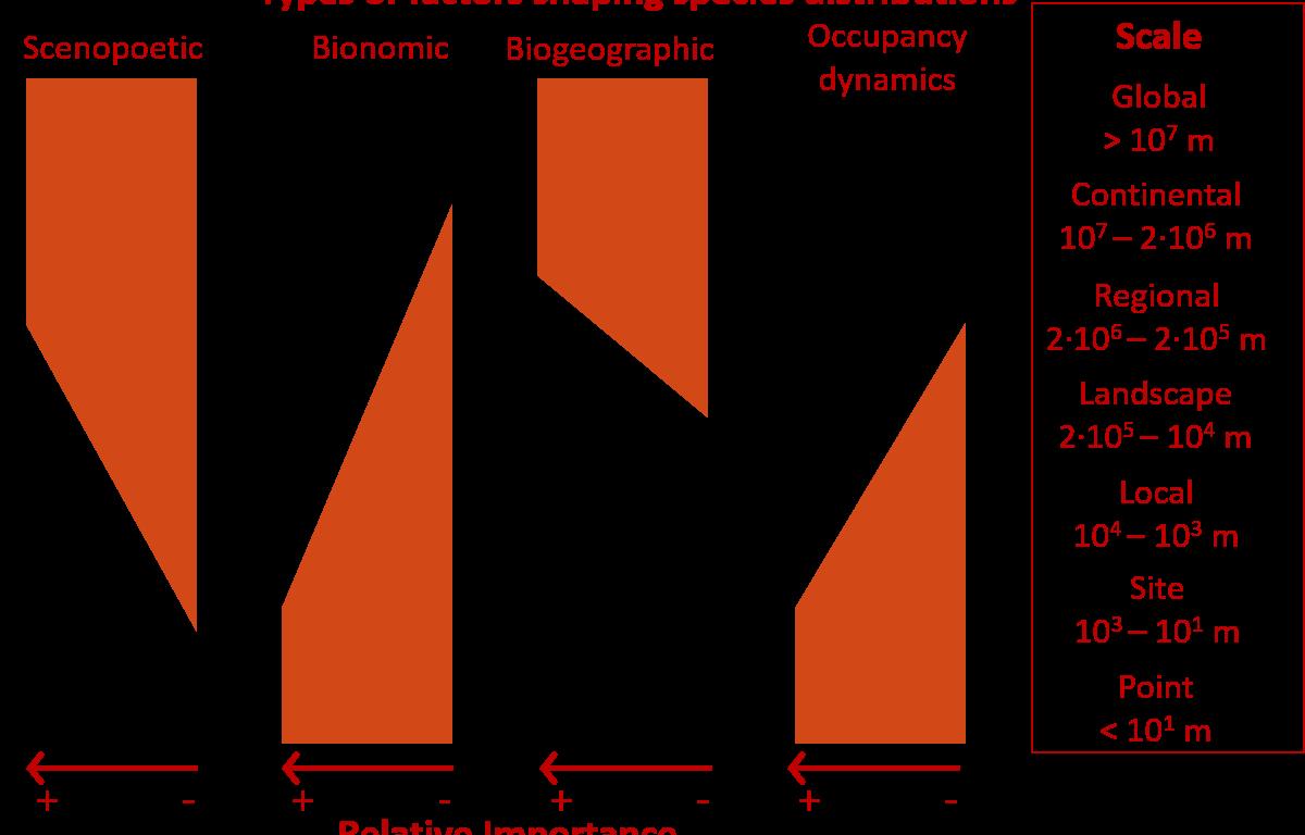 Hortal et al. (2010 Ecography) Understanding species distributions across spatial scales