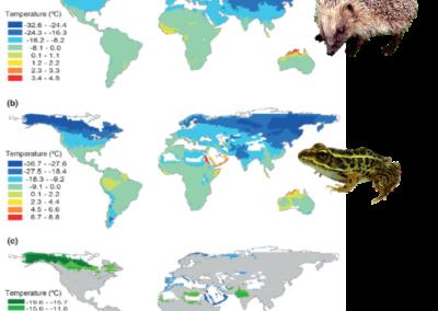 Olalla-Tárraga et al. (2011 J Biogeogr) Climatic niche conservatism and the evolutionary dynamics in species range boundaries