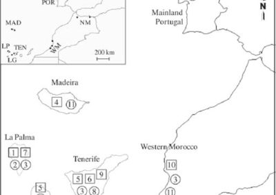 Santos et al. (2011 Oikos) Richness and level of generalism in parasitoids of a microlepidopteran in Macaronesia