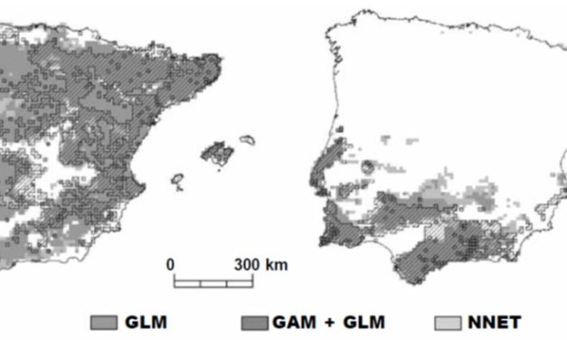 Chefaoui et al. (2011 Anim Biodiv Conserv) (2011) Effects of species' traits and data characteristics on distribution models