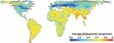 Diniz-Filho et al. (2009 J Biogeogr) Climate history, human impacts and global body size of Carnivora