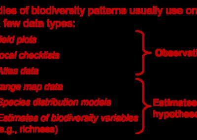 Hortal (2008 J Biogeogr) Uncertainty and the measurement of terrestrial biodiversity gradients