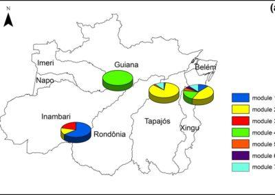 Alves-Martins et al (Insect Conserv Div 2019) Drivers of Amazonian stream Odonata diversity