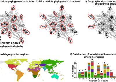 Calatayud et al (PNAS 2016) Geography and major evolutionary transitions shape host use of plant parasites