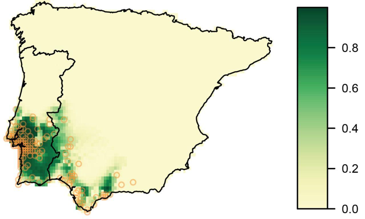 Chefaoui et al (Web Ecol 2016) Using niche models to predict the distribution of xerophytic shrubs