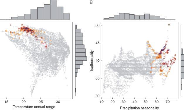 Chozas et al (Ann Bot 2017) Environmental niche divergence among parapatric dune shrub sister species
