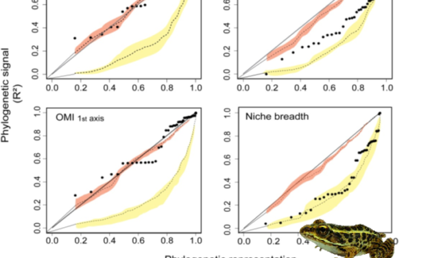 Gouveia et al (Global Ecol Biogeogr 2014) Thermal tolerance–geographical range interface and niche dimensionality