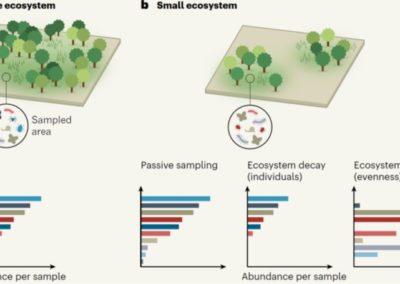 Hortal & Santos (Nature 2020) Rethinking extinctions that arise from habitat loss