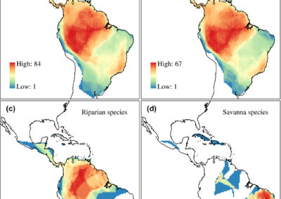 Meyer et al (Global Ecol Biogeogr 2020) Canopy height explains species richness of Neotropical lianas