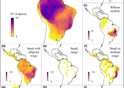 Meyer et al (J Biogeogr 2020) Deconstructing richness–environment relationships in Neotropical lianas