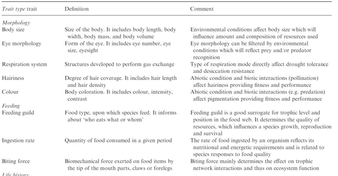Moretti et al (Func Ecol 2017) Handbook of protocols for measuring terrestrial invertebrate functional traits