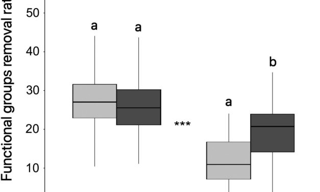 Noriega et al (Biotropica 2021) Human perturbations reduce dung beetle diversity and dung removal