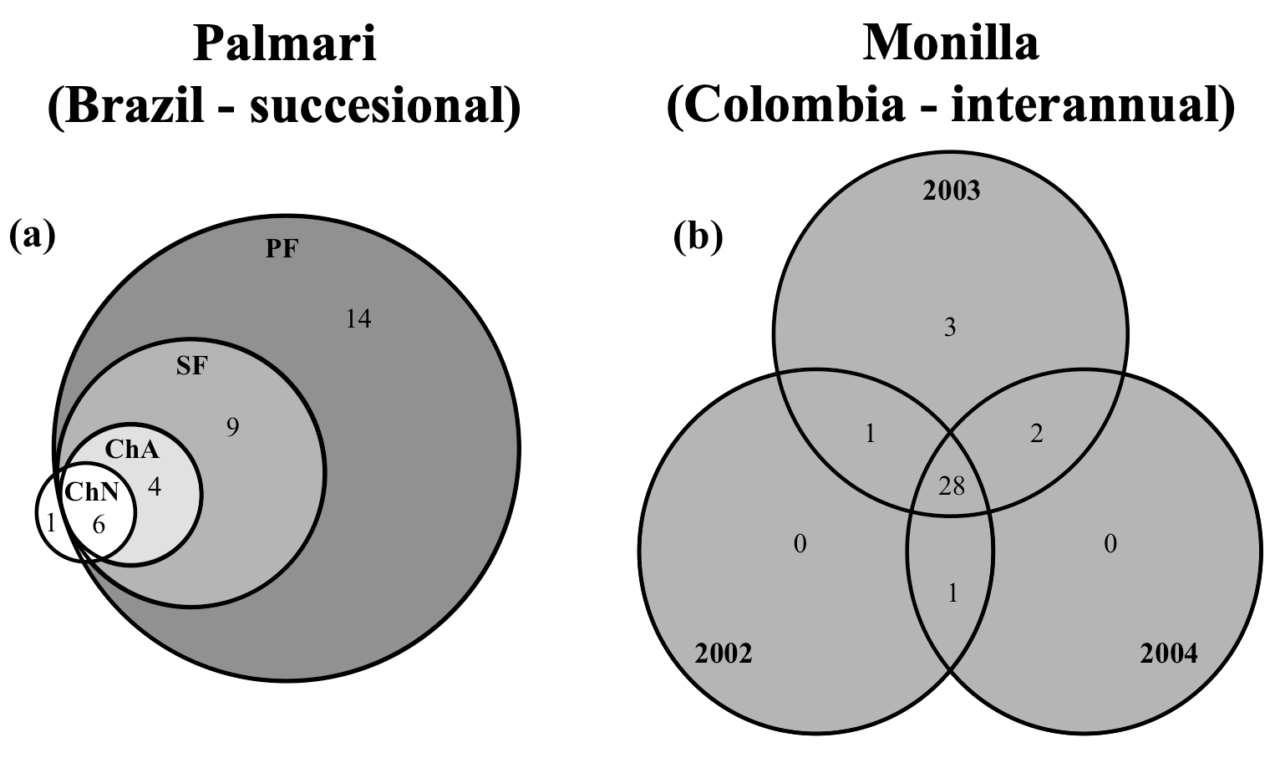 Noriega et al (Oecologia 2021) Temporal changes in Amazonian dung beetle assemblages