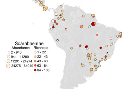 Pessôa et al (J Biogeogr 2021) Unveiling the drivers of local dung beetle species richness in the Neotropics